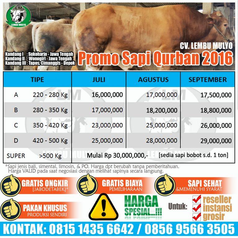 Promo Sapi Qurban 2016