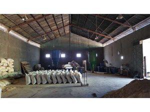 Jual Pakan Ternak Sapi di Sukoharjo Jawa Tengah