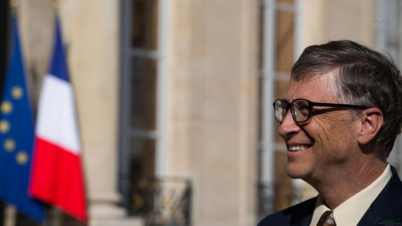 Bill Gates Investasi Rp 546 Miliar untuk Kembangkan Sapi Super