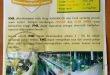 Sumber Protein Tenak FML Fermented Mother Liquor
