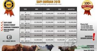PRICELIST SAPI QURBAN 2018