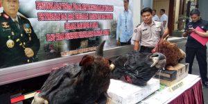 https://www.merdeka.com/peristiwa/tak-penuhi-standar-sanitasi-pangan-polisi-sita-55-ton-daging-impor.html