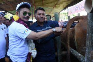 Pemerintah berupaya mempercepat swasembada daging, kata Mentan
