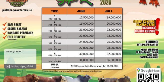 Promo Sapi Qurban 2020